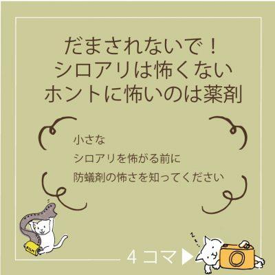岡崎市でシロアリのことなら百年の家プロジェクト