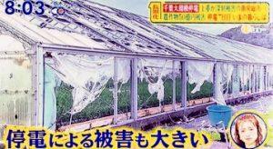 岡崎市で新築の注文住宅を建てるなら百年の家s102